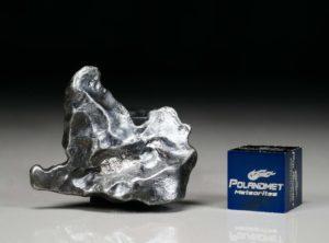 SIKHOTE ALIN (16.6 gram)