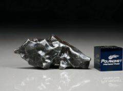 SIKHOTE ALIN (14.6 gram)