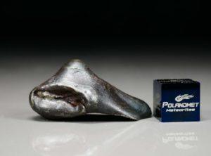 SIKHOTE ALIN (18.0 gram)