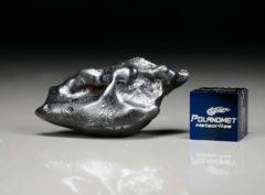 SIKHOTE ALIN (16.8 gram)