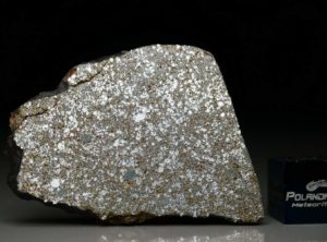 NWA 4835 (7.49 gram)