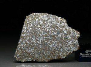 NWA 4835 (6.58 gram)