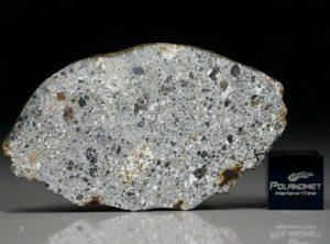 NWA 4836 (8.41 gram)