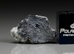 TISSINT (1.256 gram)