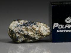 NWA 5219 (0.69 gram)