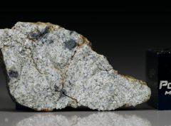 NWA 5219 (2.26 gram)