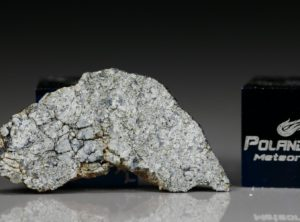 NWA 5219 (1.18 gram)