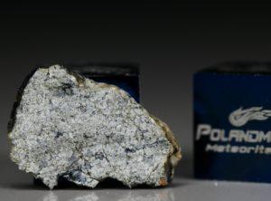NWA 5219 (0.92 gram)