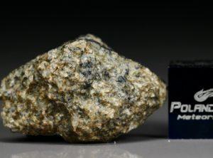 NWA 5219 (3.00 gram)
