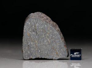 NWA 11641 (46.61 gram)