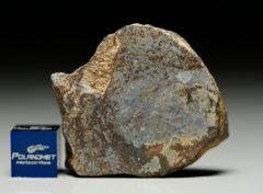 NWA 6256 (15.15 gram)