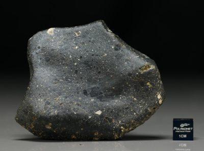 NWA 6265 (67.34 gram)