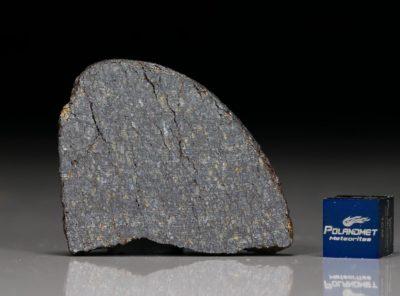 NWA 11641 (9.78 gram)