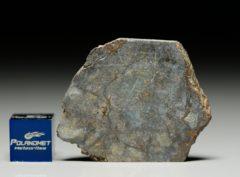 NWA 6256 (7.02 gram)
