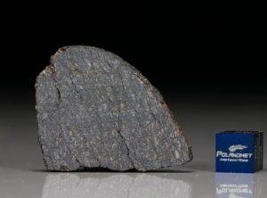 NWA 11641 (8.10 gram)
