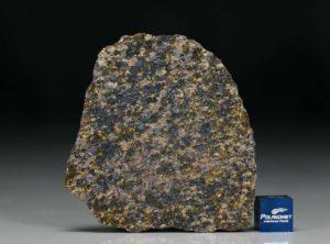 NWA 11640 (24.46 gram)