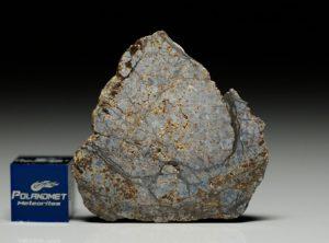 NWA 6256 (8.55 gram)