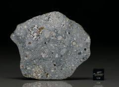 NWA 6265 (24.03 gram)