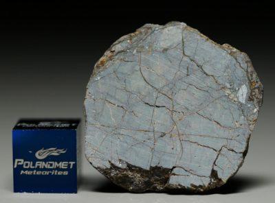 NWA 6256 (4.04 gram)