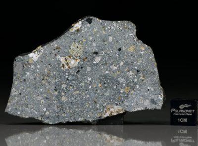 NWA 6265 (12.97  gram)