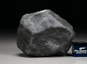 BENENITRA (68.42 gram)