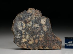 NWA 11742 (9.75 gram)