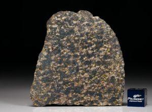 NWA 11640 (20.78 gram)