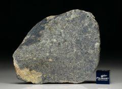 NWA 6232 (21.92 gram)