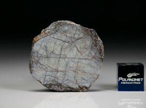 NWA 6256 (4.90 gram)