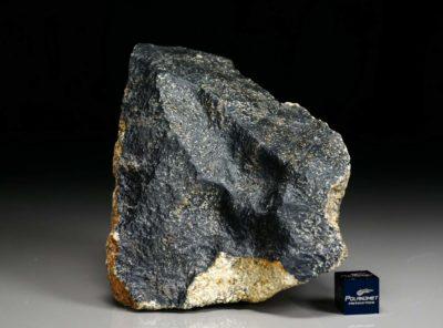 NWA 6309 (598 gram)