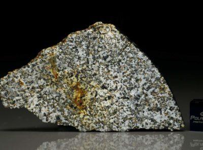 NWA 6309 (10.73 gram)