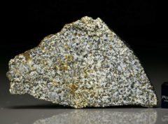 NWA 6309 (14.21 gram)