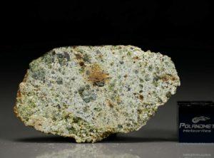 NWA 7490 (12.11 gram)