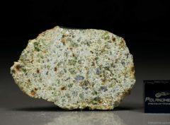 NWA 7490 (8.24 gram)