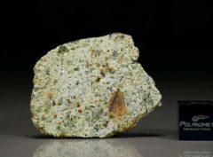 NWA 7490 (6.81 gram)