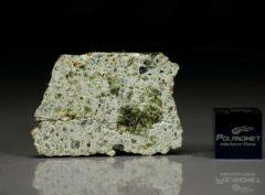 NWA 7490 (5.00 gram)