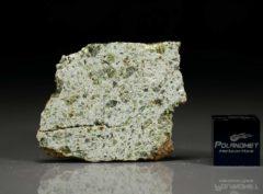 NWA 7490 (4.95 gram)