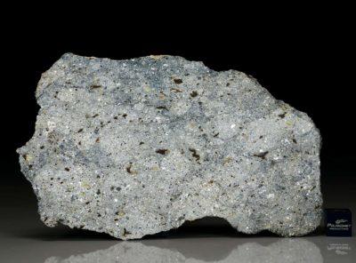 NWA 7854 (77.1 gram)