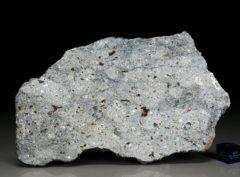 NWA 7854 (80.3 gram)