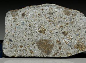 NWA 8372 (15.26  gram)