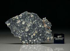 NWA 11421 (2.42 gram)