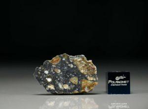 NWA 11421 (1.48 gram)