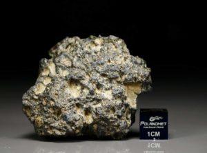 NWA 11421 (57.6 gram)