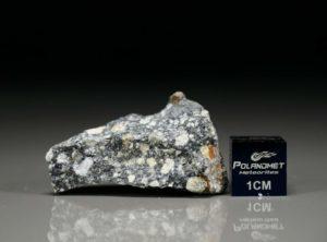 NWA 11421 (11.09 gram)
