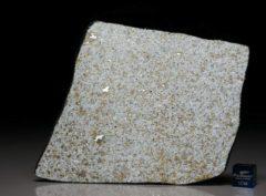 Ghdamis LIBYA FALL (48.4 gram)