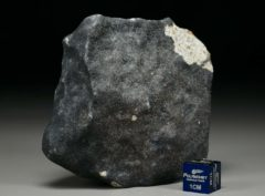 Ghdamis LIBYA FALL (239 gram)