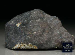 Ghdamis LIBYA FALL (228 gram)