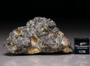 NWA 11421 (21.89 gram)
