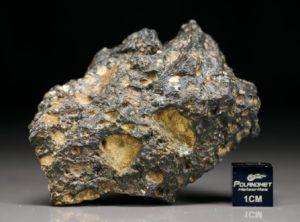 NWA 11421 (68.17 gram)