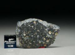 NWA 11387 (6.05 gram)